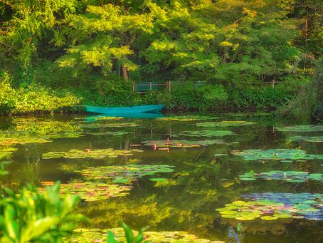 JARDIN de MONET,  Kochi Japan