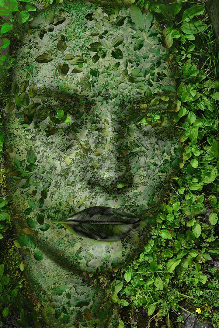 Grass Face