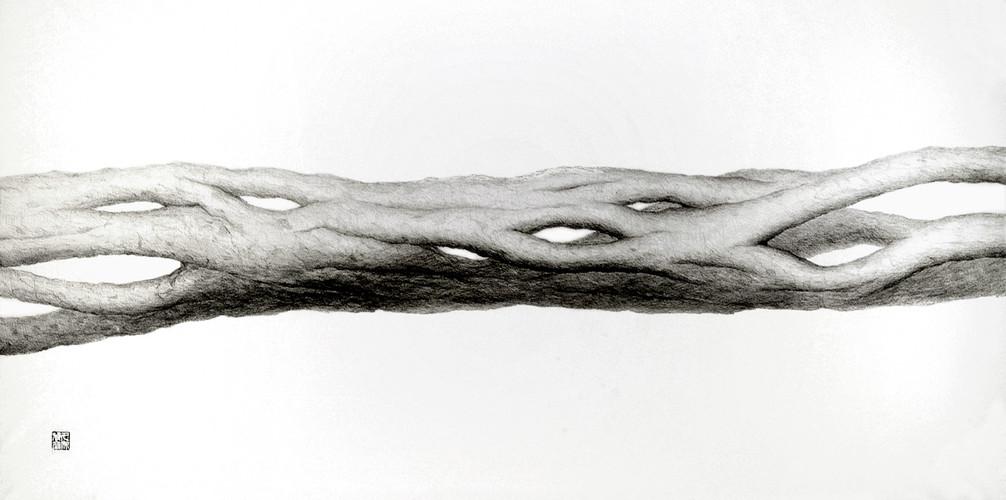 Neutral Matter Pencil Drawing