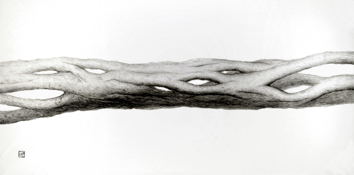 Neutral Matter Pencil Drawing