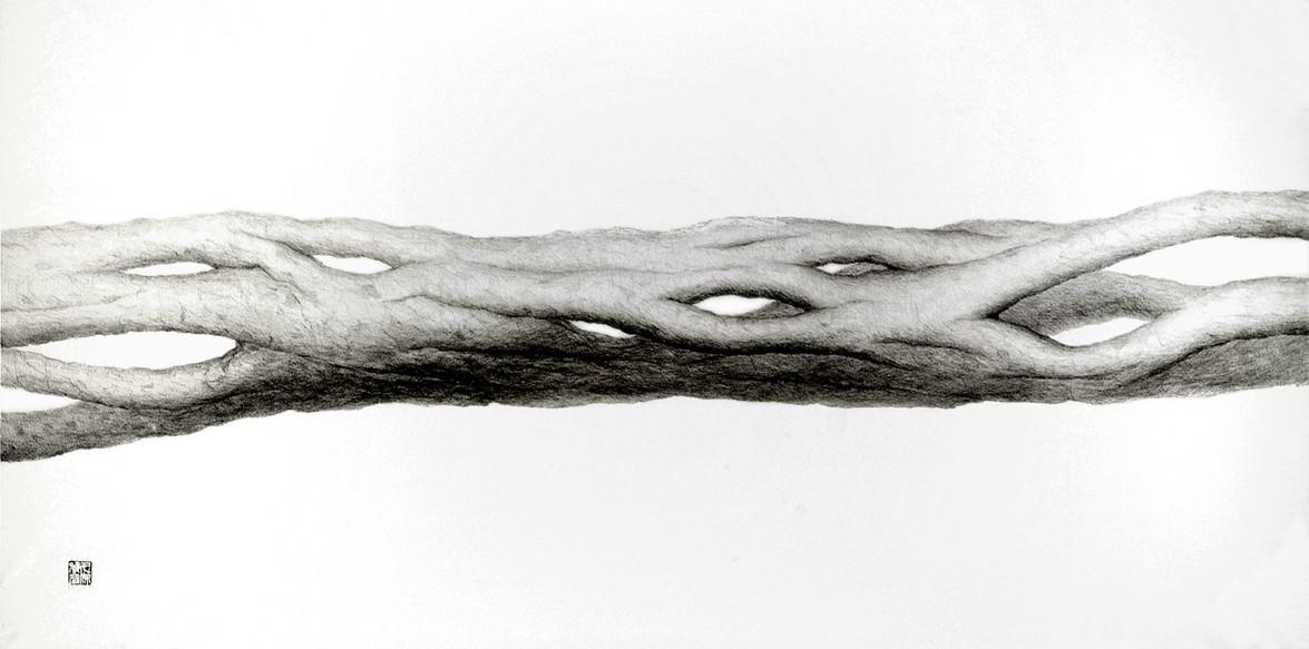 #NeutralMatter #GrowMatter - #JoinBranch Pencil on Japanese paper 1200 x 600mm