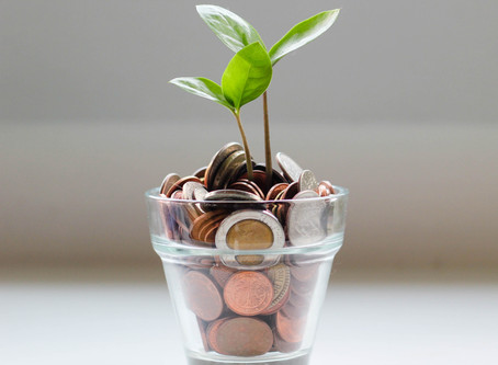 Defined Contribution Pension Plans: Benefits and Drawbacks