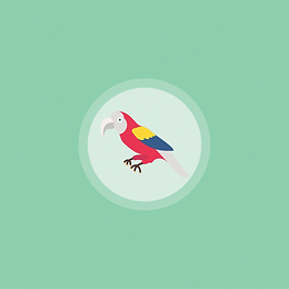 Macaw-Green.png