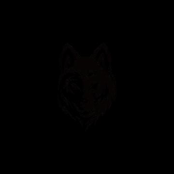 wolf-bolt-emblem-mascot-head-silhouette-