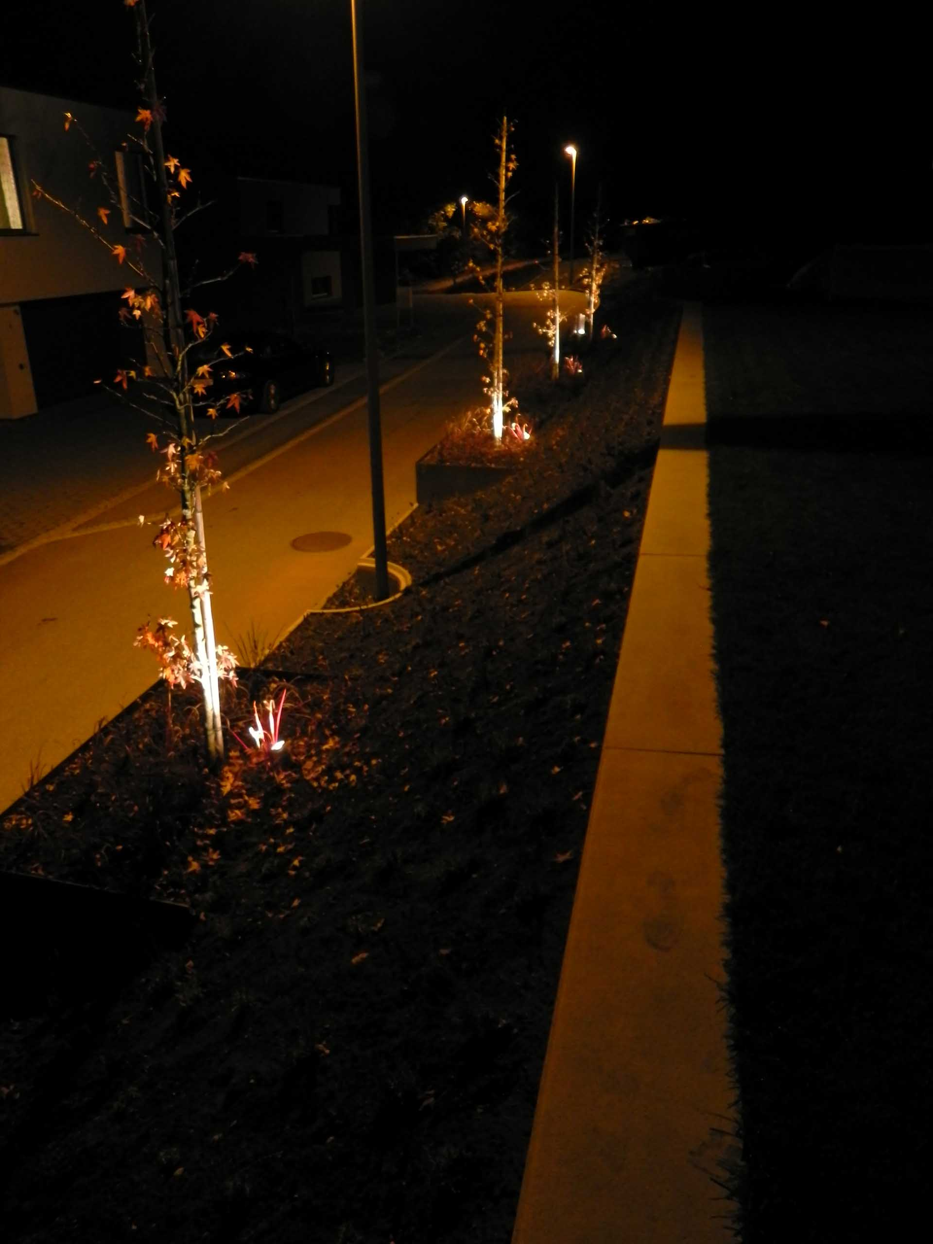 Allmendstrasse 01