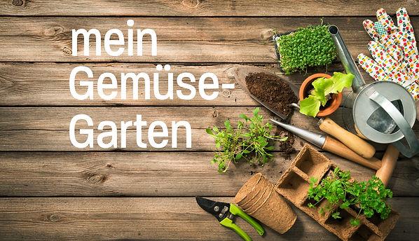 Gemüsegarten2.jpg