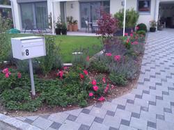 Fuchsackerweg OensingenWP_000334