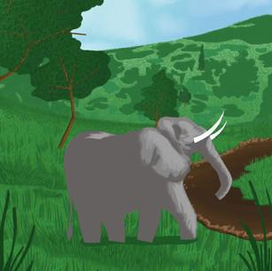 Wildlife in Crisis (Elephant)