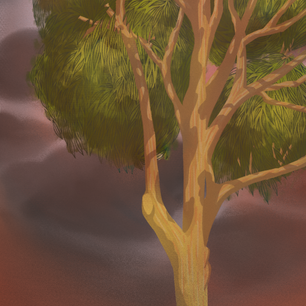 Wildife in Crisis (Koala BG)