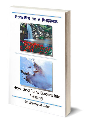 Book: From Bliss To A Blizzard