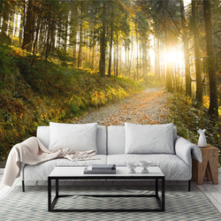 forest_wall