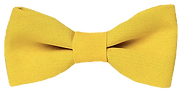 yellow bowtie.png