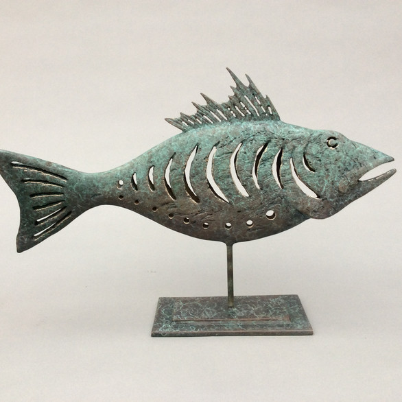 Primitive Fish by Stephen Henderson