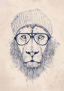 cool_lion.jpg