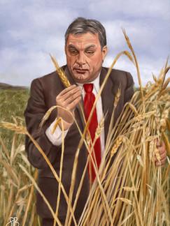 Orbán Viktor A Búzamezőn