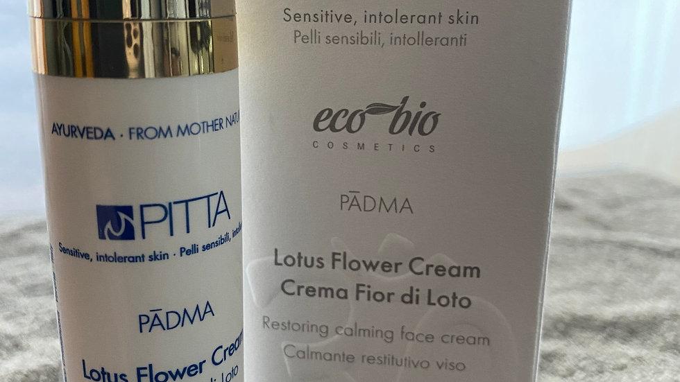 Crème pour visage Pitta