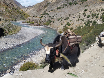 Stories from Dolpo: A Blessing