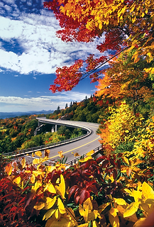 Blue Ridge Parkway Viaduct (Linn Cove) (