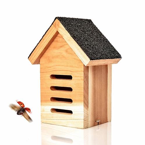 Marienkäferhaus aus 100% Naturholz