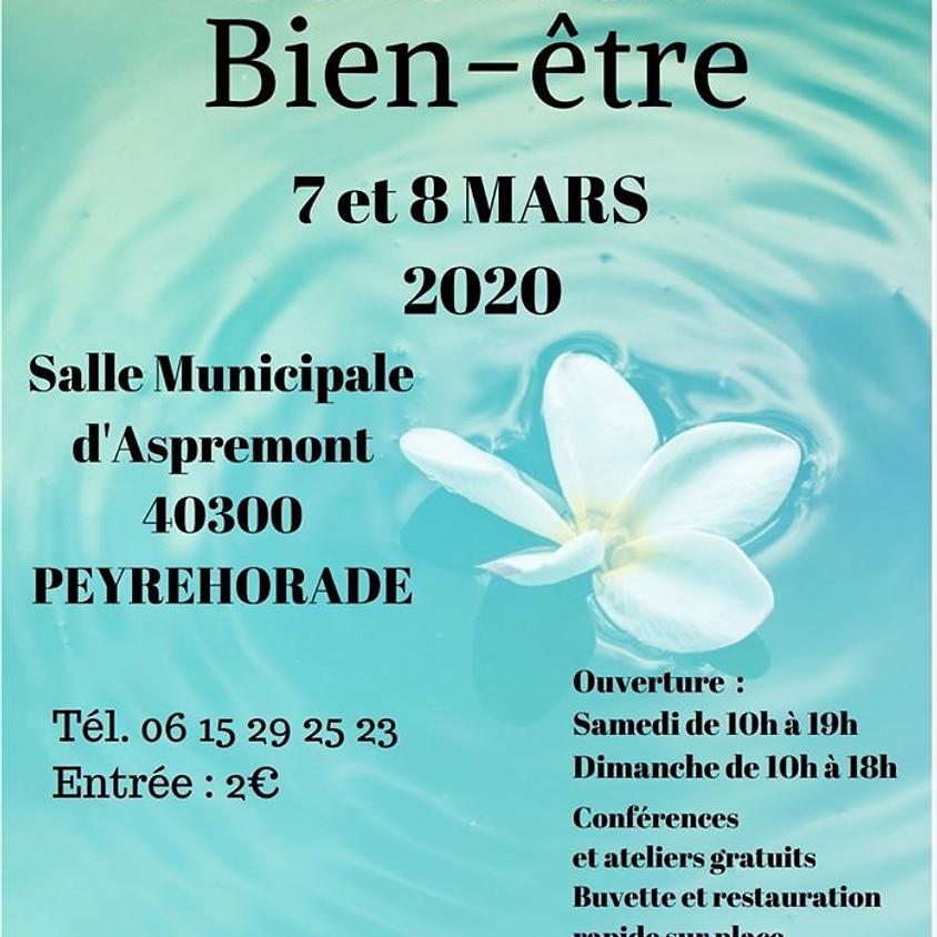 Salon du Bien-Etre de Peyrehorade (40)