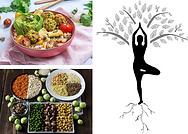 pour proteines vegetales.png
