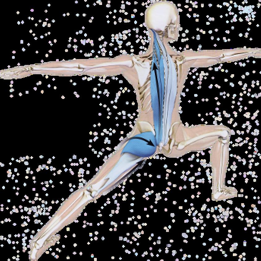200/300 hrs YAP Certified Yoga Teacher Training  (1)