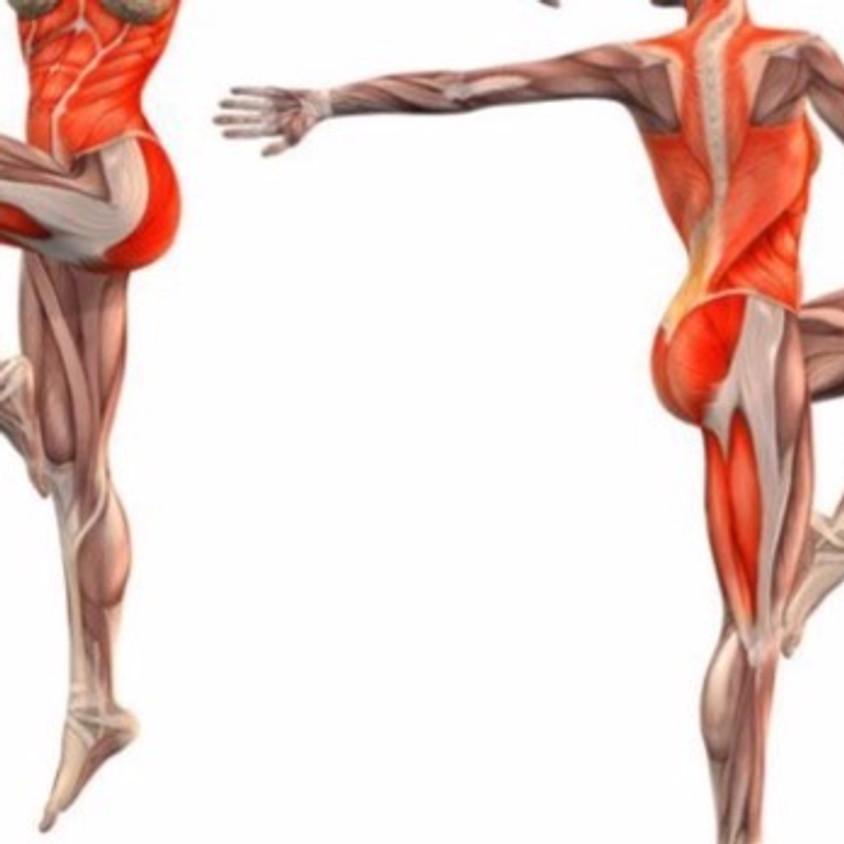 Yogic Anatomy and Physiology Level I