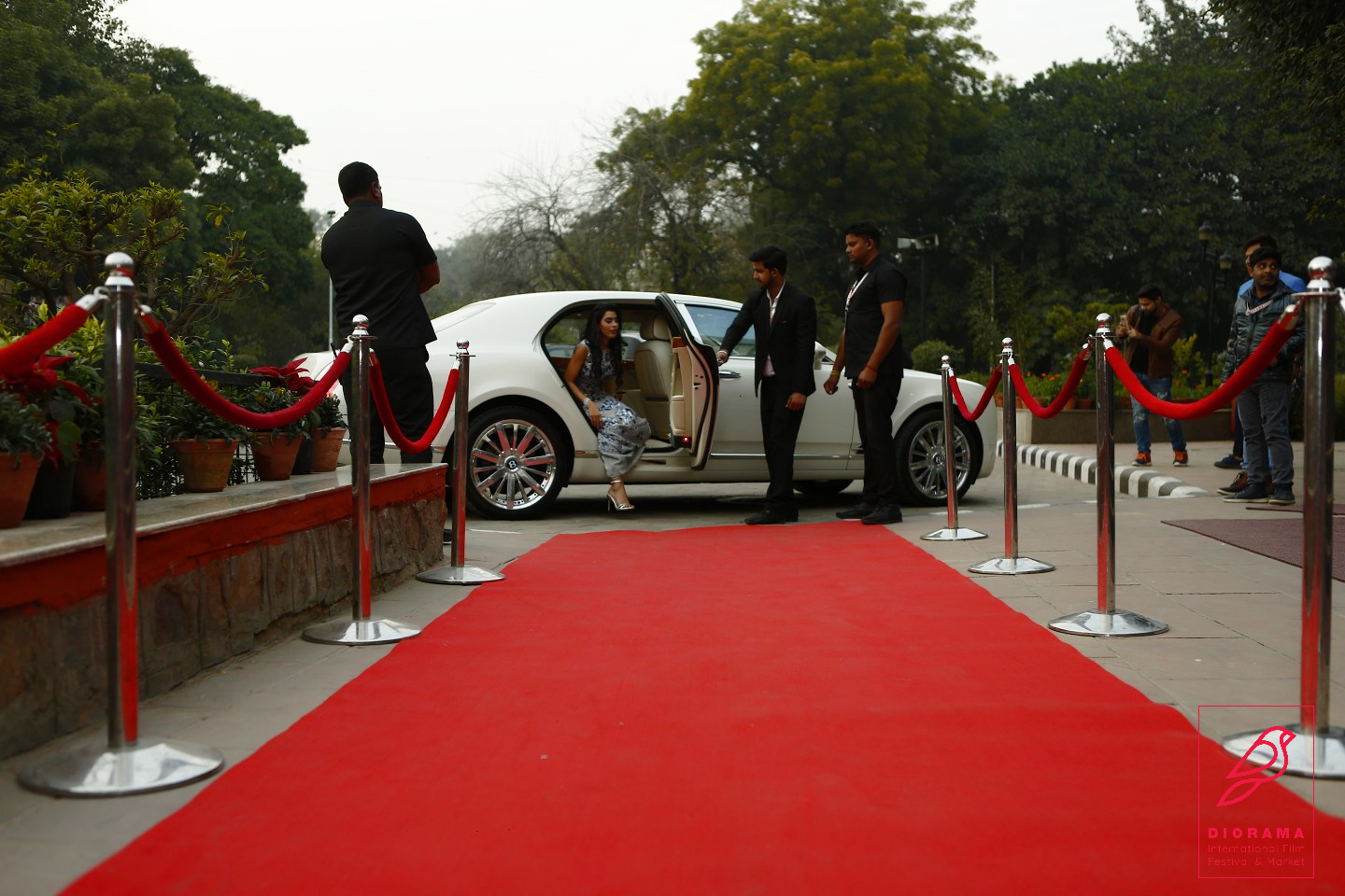 Diorama Red Carpet6