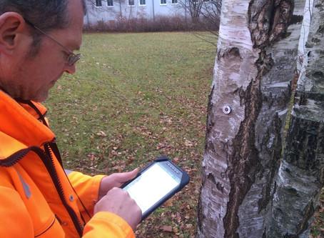 Das kommunale Objektmanagement wird digital - vom Baum bis zur Hauswand.