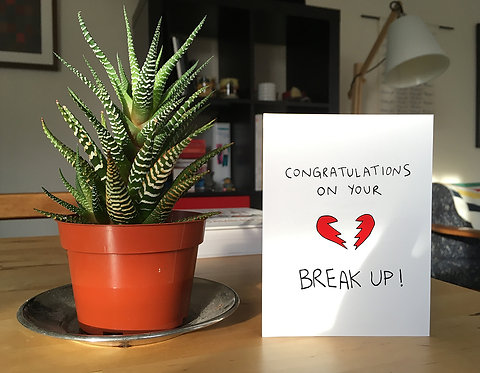 Congratulations on Your Break Up!