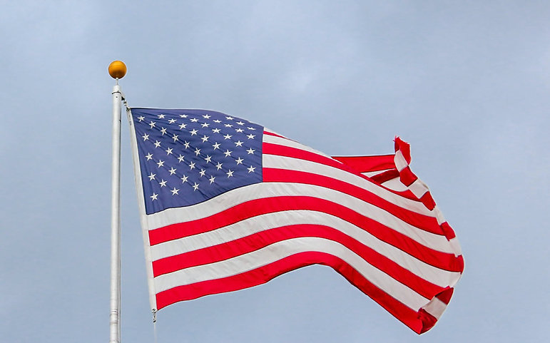 flag on post background.jpg