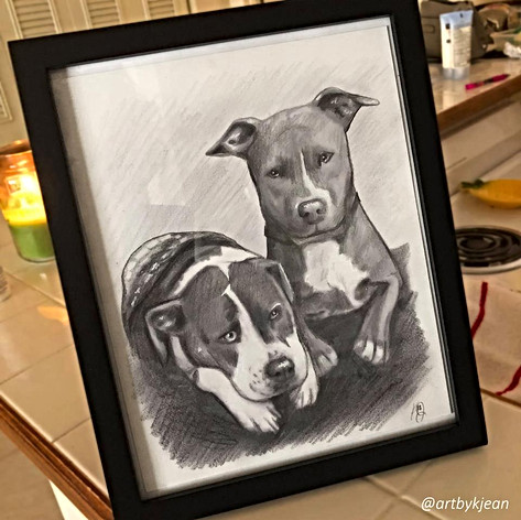 Two dog pet portrait