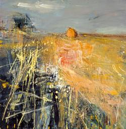 Summer Fields, 1961