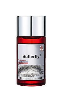 butterfly _small.jpg