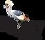 ripley_wc_crane_full_blck_rgbupto4inches