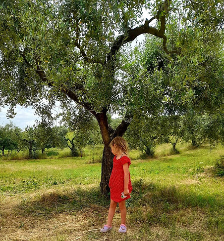 Frida sotto l'albero.jpeg