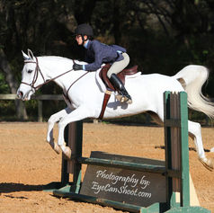 Hunter Jumper - Equestrian event. Copyright - Damon Herota