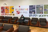 PPCC 50th Anniversary Branding
