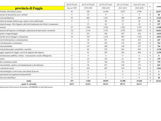 Primo studio sulla longevità delle imprese nelle province pugliesi