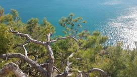 """Estate in Puglia, spiagge aperte: """"Gargano pronto, più spazi e sicurezza"""""""