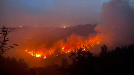 """Incendi sul Gargano, Cia Puglia: """"Serve operazione verità su risorse antincendio"""""""