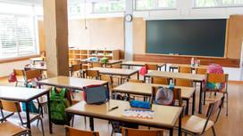 No alla scelta dei genitori se mandare o meno i figli a scuola