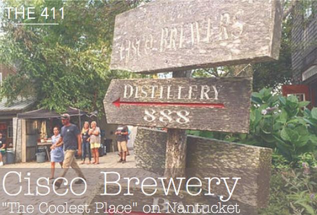 The 411- Cisco Brewery, Nantucket