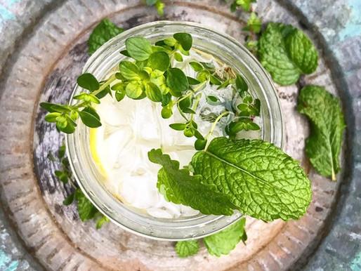 Recipes: Garden Herb Cocktail