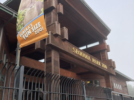 Sequoia Park Zoo - Wild Adventure In A Small Package