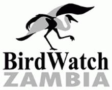 BirdwatchZambia.png