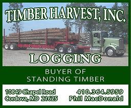 Timber Harvest - half page.jpg