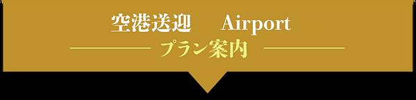 空港送迎.png