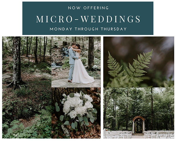 Micro Wedding Offer.jpg