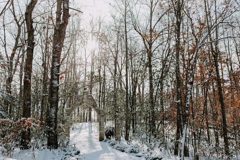 Gallery-winter-3.jpg